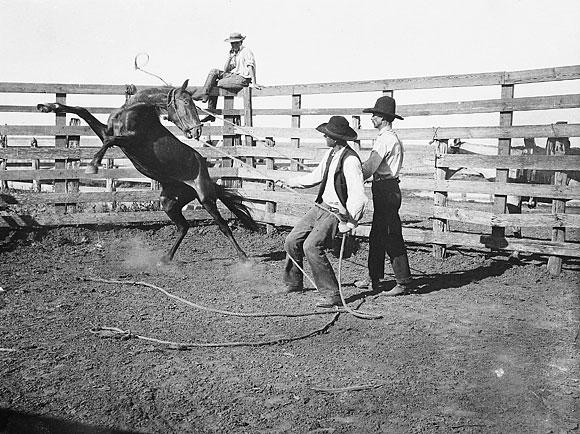 matador_ranch